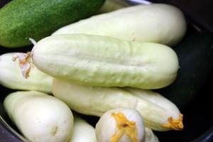 U svijetu traženo albino povrće – koje vrste su popularne?