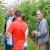 Galenika Fitofarmacija: Dan polja jabuke