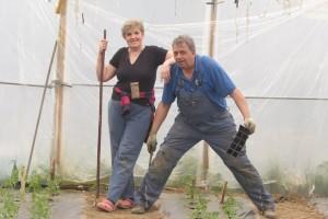 Ibrahim i Jasminka Ajanović podmlađuju se uz posao u plasteniku