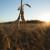Otkriveno GMO polje soje u Semberiji - poljoprivrednik kažnjen sa 300 KM