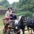 Dođite na 3. Međunarodnu svetoivanjsku konjičku reviju