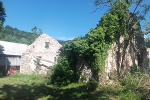 "Mogu li ""Pametna sela"" spasiti pusta sela Hrvatske?"