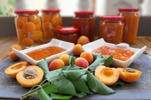 Stopama predaka proizvode i prerađuju voće i povrće