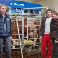 Još jedan hrvatski bik najviše svjetske razine!