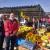 Nihad Gurbeta već 15 godina uzgaja povrće u plastenicima i zadovoljan je rezultatima