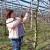 Rezidbu voća nije teško naučiti, ali što čini dobrog rezača?