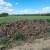 Nova IAKS operacija: 10.1.17 Poticanje uporabe stajskog gnoja na oraničnim površinama