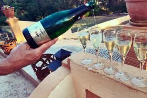 Vera de Estenas vina: Novi u registru zaštićenih oznaka porijekla