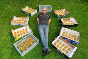 Oborio svetski rekord - na jednoj stabljici proizveo 839 plodova paradajza