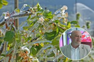 Profesor Stanisavljević: Znanje je najbolji sistem zaštite od mraza