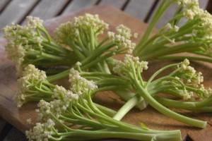 Caulilini - novo povrće ili dobar marketinški trik?