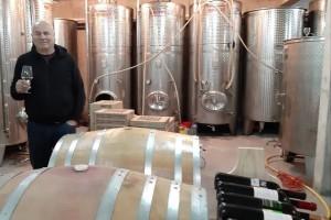 Ambicije vinarije Matić: Proširiti prodaju i izvoziti na europsko tržište