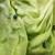 Zelena salata sa plavim mrljama završila u rukama potrošača. Inspekcije se to ne tiče?