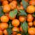 Zabranili uvoz mandarina iz Turske