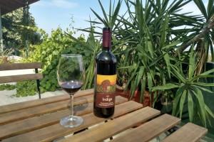 Kako nastaje organsko vino i koje su razlike u odnosu na konvencionalno?