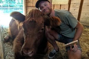 Terapiju grljenja s kravama naplaćuju 508 kuna
