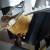 Skrivena kamera otkrila okrutno ponašanje prema ovcama pred klanje