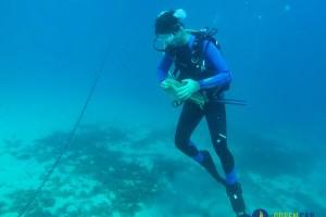 Uklonili gotovo 5 kubičnih metara morskog otpada!