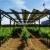 Rotirajući solarni paneli štite vinograde u Francuskoj