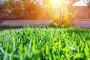 Sunčano i toplo - idealno za radove u polju