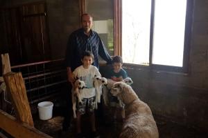 Ovca kod Prijepolja ojagnjila četvorke