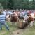 Susreti gorštaka iz zlatarskih sela prerasli u tradiciju
