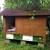 Pčelinja klinika sa apikomorama - lijek za kompletan organizam