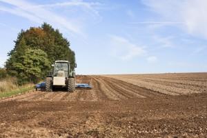 Grad Beograd subvencioniše razvoj stočarstva, biljne proizvodnje i nabavku traktora