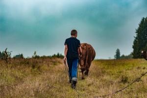 Započela rasprava o reformi ZPP-a, moguće i kašnjenje isplata poljoprivrednicima?
