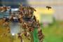 Autoput za pčele u Oslu