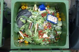 U BiH svaki dan bacimo oko 500 tona hrane?