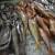Blagdanska prepucavanja: Mesari optužuju prodavače na ribarnici