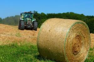 Natjecanje Svetoivanjsko baliranje i izložba oldtimer traktora