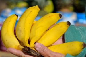 Razmišljaš li o klimi kad kupuješ banane ili hranu u plastičnoj ambalaži?