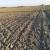 Otvoreno je novo savjetovanje - za obnovu poljoprivrednog zemljišta 20 milijuna kuna
