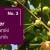 Bayer voćarski dnevnik No. 3 - obavijest proizvođačima trešnje i višnje