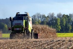 Ukrajina: Izvoz žitarica lane dostigao rekordnih 7,2 milijardi dolara