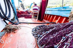 Zabranjen ulov školjkaša, puževa, spužava i bodljikaša u Paškom zaljevu do travnja 2021.