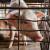 Pirot: Zašto se jedan deo domaćih svinja odvodi u klanicu, a drugi zakopava?