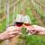 Ministarstvo poljoprivrede: Upišite se u Vinarski i Vinogradarski registar
