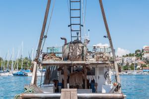 Održivo ribarstvo: Obitelj mi se bavi ribolovom već 750 godina, a ovo je prvi put da me je netko nešto pitao