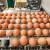 "Podnesen zahtjev za priznavanje oznake ""Dokazana kvaliteta"" za sektor jaja"