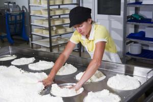 Ugovor o slobodnoj trgovini: Imamo li dovoljno domaćeg sira za izvoz?!