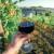 Vlada usvojila Zakon o vinu, na redu je Sabor