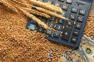 Cena pšenice beleži blagi pad