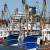 Ovlaštenici povlastica za gospodarski ribolov na moru preuzmite nove knjige očevidnika!