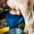 Nezadovoljni mljekari: Premiju treba povećati na 0,30 KM po litru mlijeka