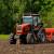 Pšenica ove godine posejana na više od 600.000 ha