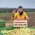 Subvencije dobija 3.000 mladih poljoprivrednika - proširena lista