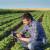 Isplata sredstava za mlade poljoprivrednike do 19. decembra